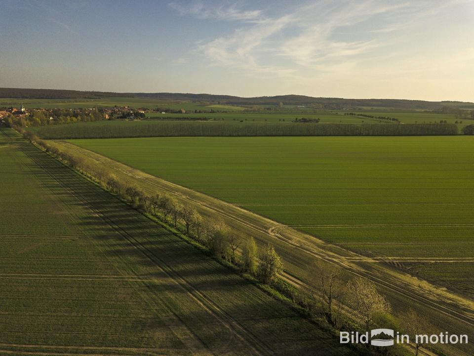 Gemeinde Huy Luftbild Vogelperspektive